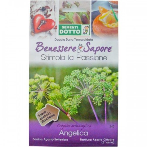 Sementi Dotto - Angelica