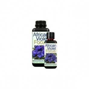 African Violet Focus - Growth Technology 1L